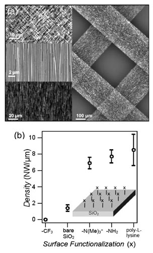 Figure 3 Optical and scanning electron microscope images of printed Ge NW arrays